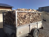 Brennholz Esche - 72336 Balingen - 10 m³ Hartholz