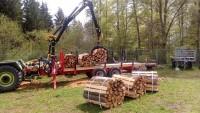 Brennholz Buche - 72510 Stetten - 1 m³ Hartholz