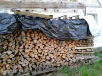 Brennholz Esche - 72131 Ofterdingen - 10 m³ Hartholz
