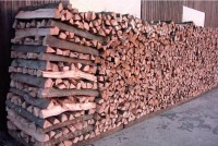 Brennholz Buche - 71577 Großerlach - 1 m³ Hartholz