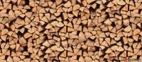 Brennholz Buche - 66606 st wendel - 1 m³ Hartholz