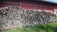 Brennholz Apfelbaum - 74523 Schwäbisch Hall - 1 m³ Obstholz